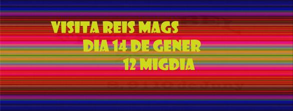 slider REIS MAGS bel 2018